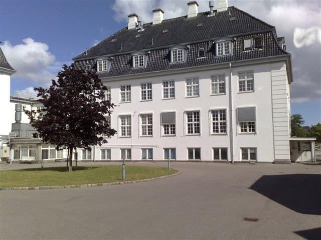 stort_hvidt_hus